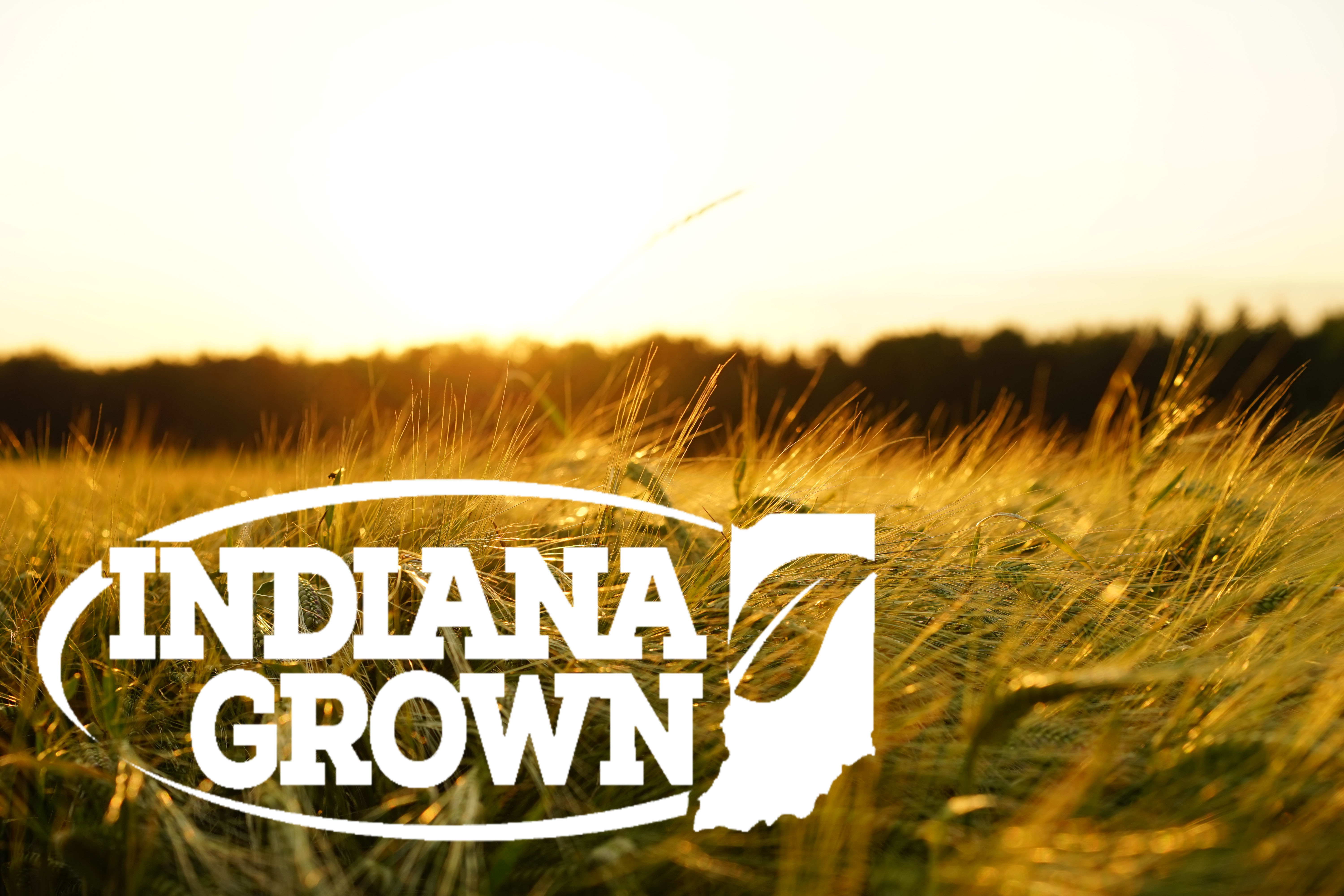 Thankful for our Newest Indiana Grown Members