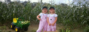 Souder Farms Sweet Corn LLC