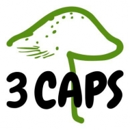 3 Caps Mushrooms