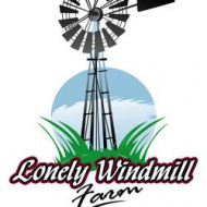 Lonely Windmill Farm