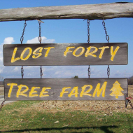 Lost Forty Tree Farm