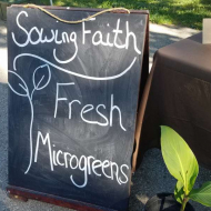 Sowing Faith  Microgreens